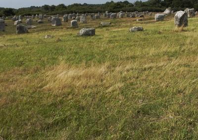 Les alignements megalithiques