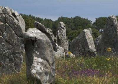 Carnac - Les alignements megalithiques