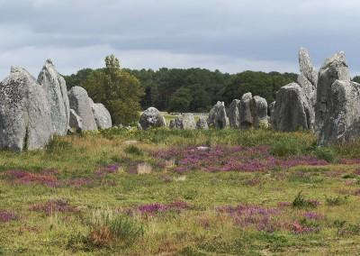 Alignements megalithiques à Carnac