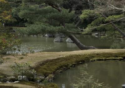 Voie de terre entre deux étangs