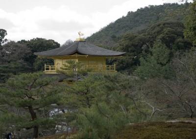 Le Pavillon d'or à travers les arbres