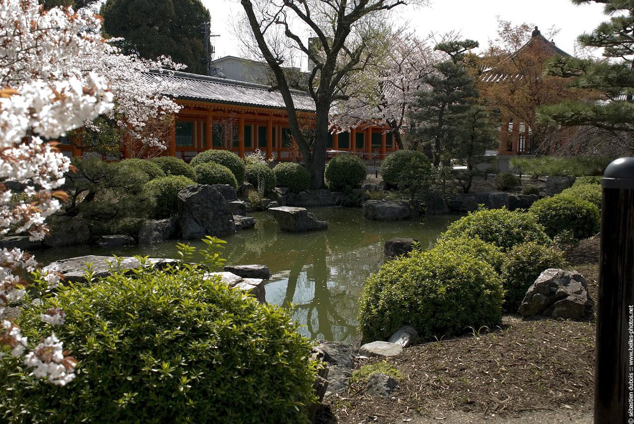 Japon belles photos for Etang jardin