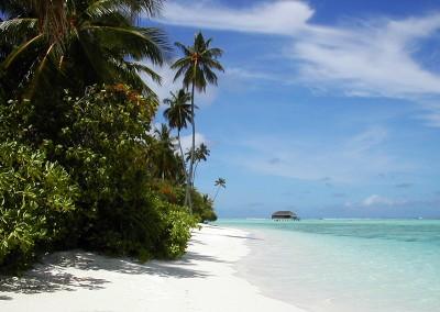 Honeymoon villa et vegetation luxuriante