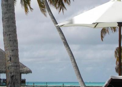 Cocotier parasol et transat d une ile hotel aux Maldives