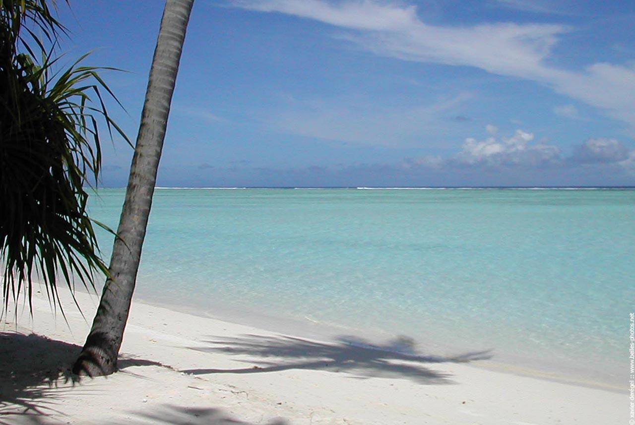 Plage paradisiaque aux maldives belles photos - Image de plage paradisiaque ...