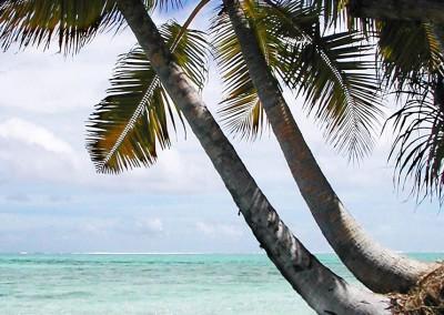 Dans l intimite des Maldives