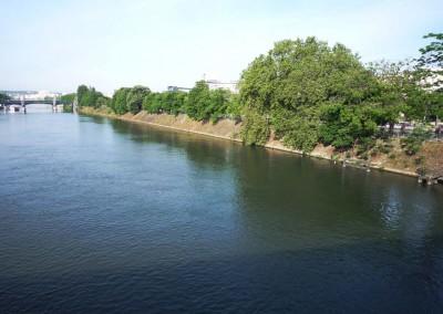 L ile aux cygnes depuis le pont de Bir-hakeim