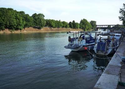 L ile aux cygnes depuis le quai du port de Paris