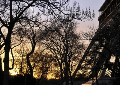 Végétation en hiver à côté de la tour