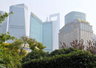 La nature dans la ville à Shanghai