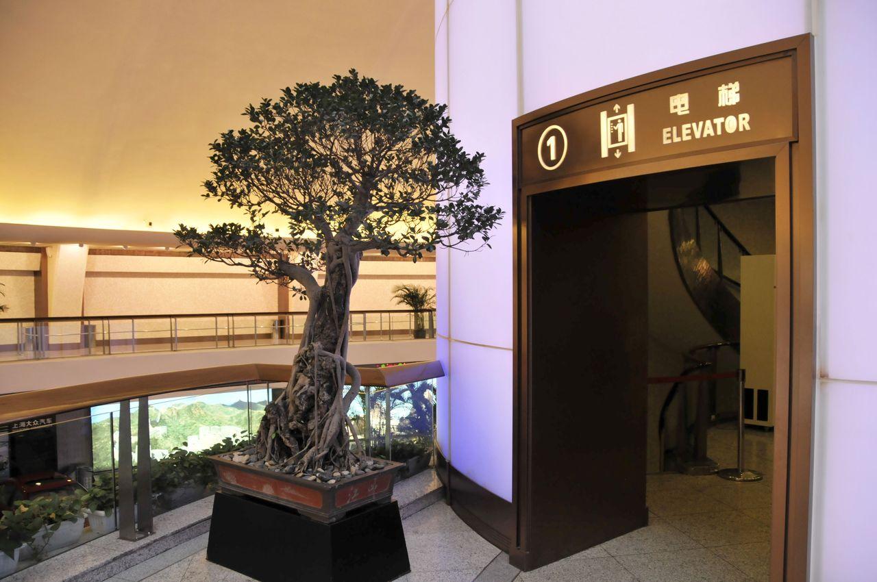L'ascenseur de la Perle de l'Orient Tower TV Shanghai